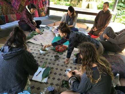 Comfrey Salve: Sacred Medicine Plant Wisdom course