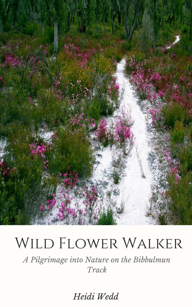 Wild Flower Walker book