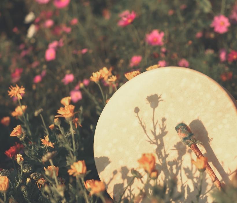 shamanic herbalism